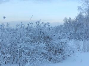 зимние сумерки
