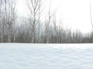 снежный прибой