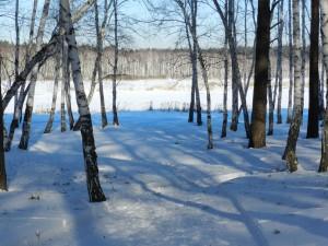 свето-тене-живопись на снегу