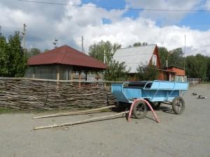 На ранчо в Лукино