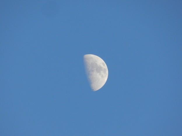 Весенняя Луна